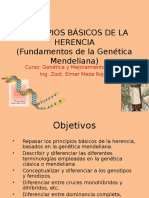 287251365 Principios de La Genetica