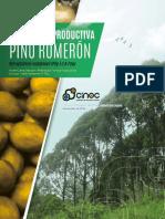 Biologia Reproductiva Del Pino Romeron