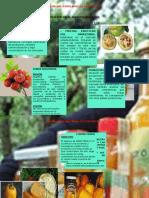 Evidencia 2 Material Informativo Sobre La Presentación de Productos