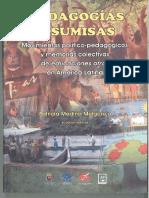 Pedagogías Insumisas - Patricia Medina Melgarejo