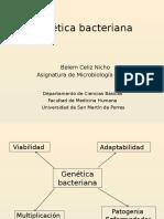 2.1.Genética Bacteriana