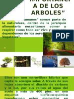laimportanciadelosarboles-120530111144-phpapp02