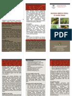 Contoh Format Leaflet Merica Perdu