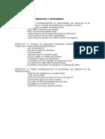 Ejercicios de Determinantes y Pronombres