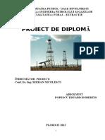 240699019-Proiect-Foraj-Licenta-Bun.docx