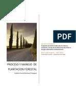 Manejo de plantacion forestal