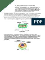 celula parte 3.pdf