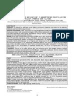 pdf_MMJ_384