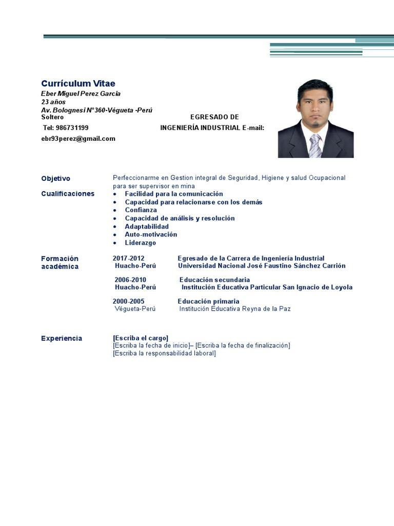 modelo-de-curriculum-no-documentado.docx