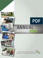BAI Annual Report 2013