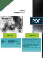 CANINE HERPESVIRUS.pptx