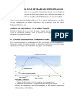LAS 4 ETAPAS DEL CICLO DE VIDA DE LOS MICROORGANISMO.docx