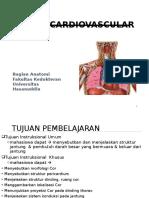 Anatomi.ppt
