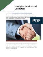 Los Diez Principios Jurídicos Del Derecho Concursal