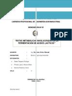 Acido Lactico - BIOTEC.