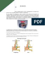 valvula diafragma