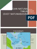 Cekungan Natuna Timur