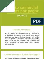 Credito comercial cuentas por pagar