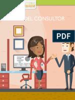 el rol del consultor.pdf