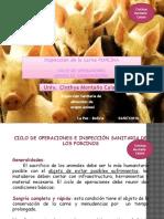 inspecciondelacarneporcina-160704174802