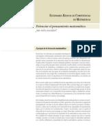 2006 ESTANDARES  MATEMÁTICAS.pdf