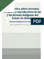 Diagnóstico sobre derechos sexuales y reproductivos de las y los jóvenes indígenas del Estado de Hidalgo