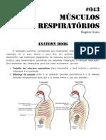043 Musculos Da Respiracao 2