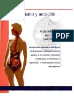 metabolismo TORTORA