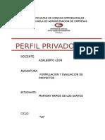 62592006-PERFIL-PROYECTO-PRIVADO.docx