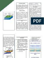 Tripticofenomenodelnio 131028072744 Phpapp02 (1)
