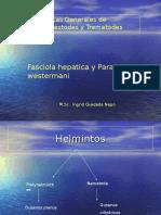 13-HELMINT.-FASCIOLA-CLONORCHIS (1).ppt