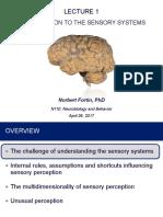 NeuroLect01 Intro