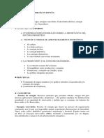 TEMA 11 -  La energía en España.pdf