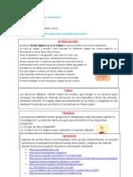 Webquest Sistema Digestivo