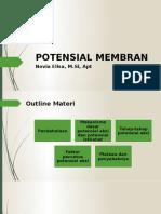 2nd Meeting Membrane Potential