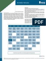ingenieria_en_minas.pdf
