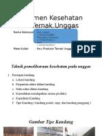 Manajemen Kesehatan Pada Ternak Unggas