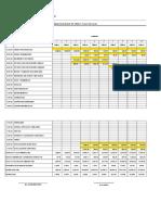 Cronograma de Obra y Valorizado -Tercera Edicion