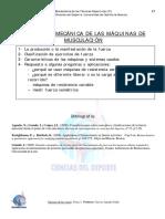 BIOMECÁNICA de las Máquinas de MUSCULACIÓN.pdf