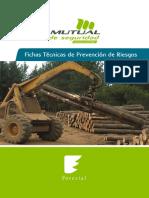 fichas_tecnicas_de_riesgos_2.pdf