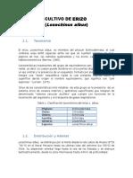 CULTIVO DE ERIZO maricultura.docx