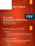 Organs of Hematopoetic (1)