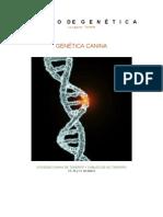 Articulo Genetica