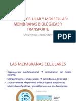 5_MEMBRANAS_Y_TRANSPORTE.pdf