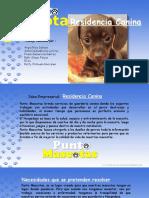 Hotel Canino Rev01