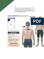 Meridianos Musculos y Areas Muy Bueno