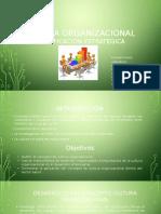 Cultura Organizacional concepto