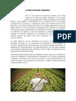Documéntese Sobre Economía Campesina