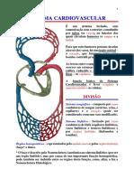 1 - Sistema Cardiovascular ESSE