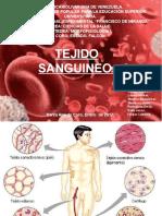 Diapositivas Originales Tejido Sanguineo (1)